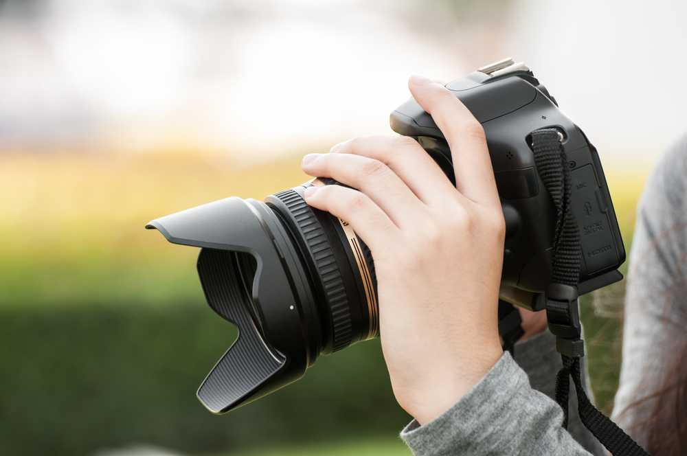 Canon vs. Nikon: ¿Qué marca de DSLR es mejor?