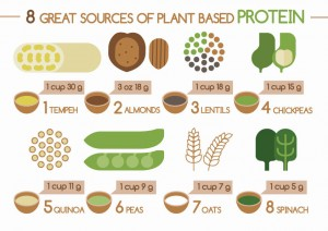 sources-of-plant-based-protein