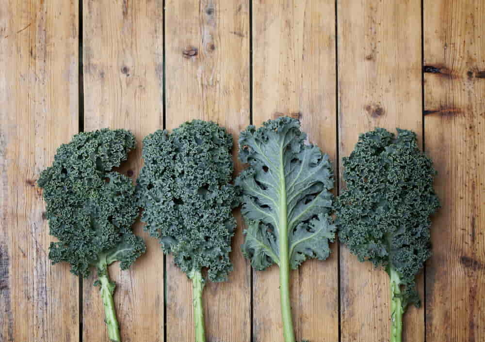 The Best Leafy Greens: Nutritional Face-Off