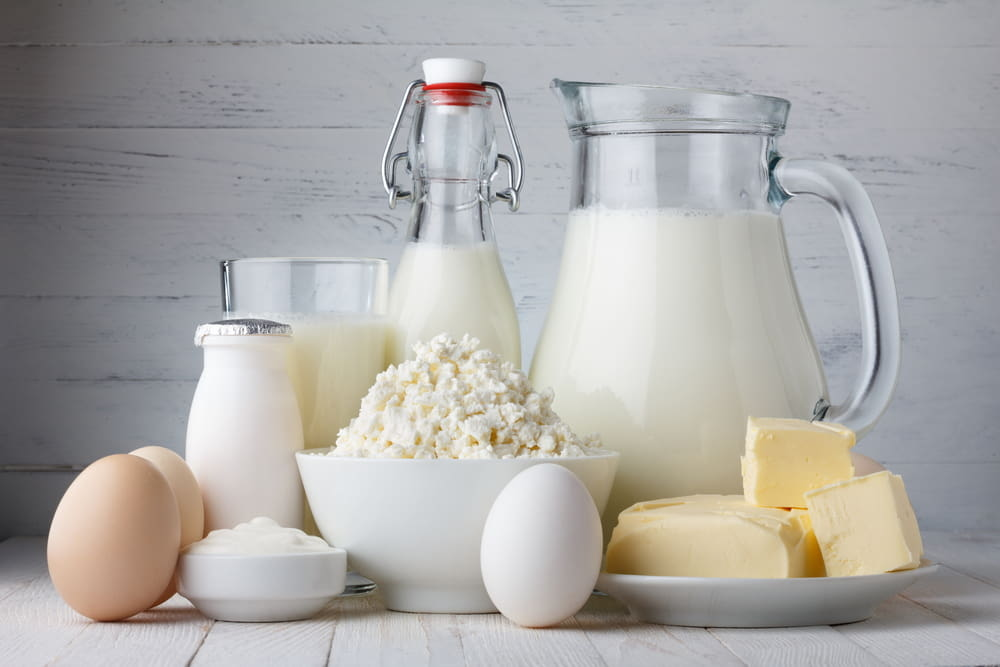 6 Reasons To Include Dairy In Your Diet