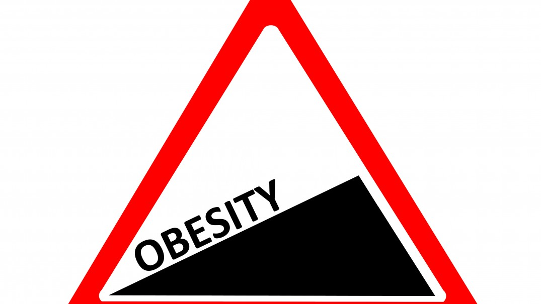 rise of obesity