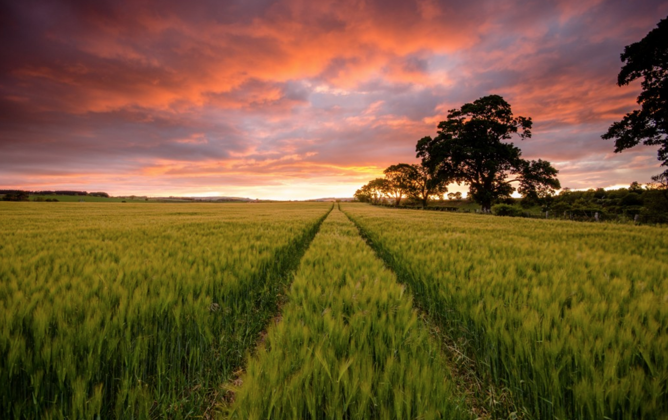 8 Landscape Photography Tips and Tricks for Beginners