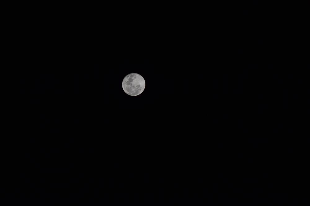 basic moon shot