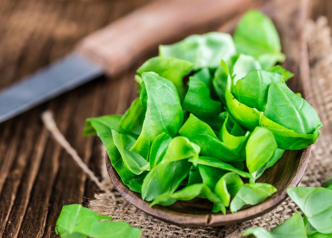What You Didn't Know About Basil, The King Herb