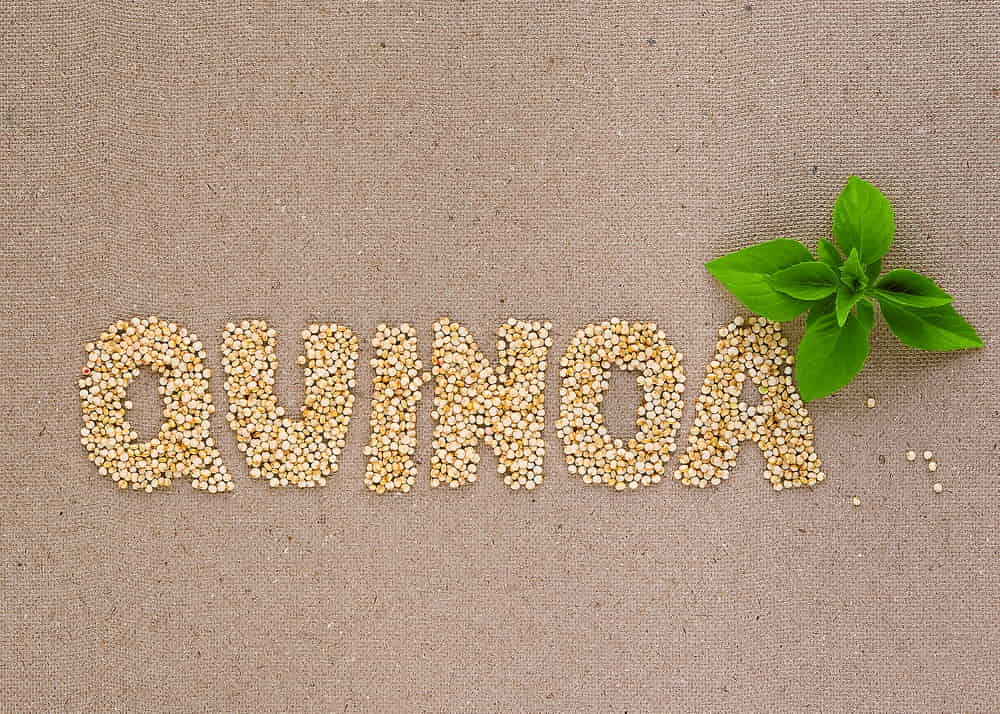 The Pseudo Cereal Quinoa and Its Health Benefits