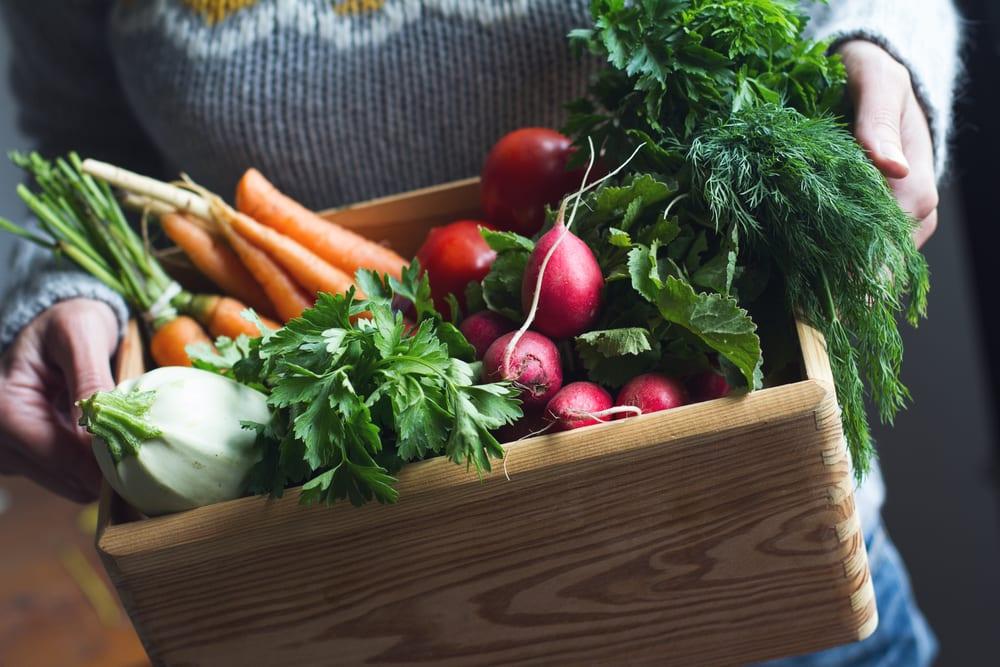 Aliments biologiques versus non biologiques