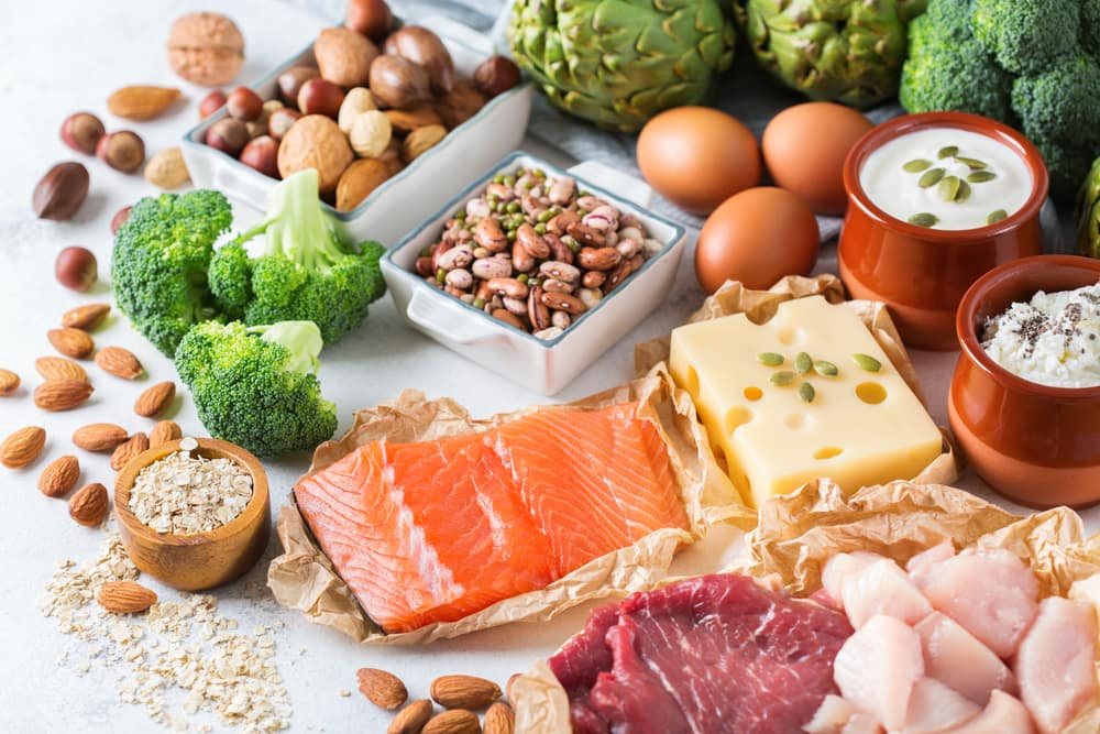 Plant Protein V Animal Protein: Which is best?