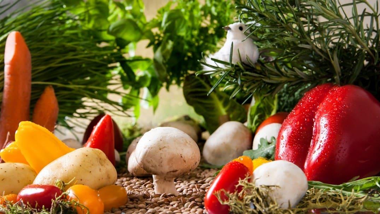 vegetables-landscape-2943500_1280
