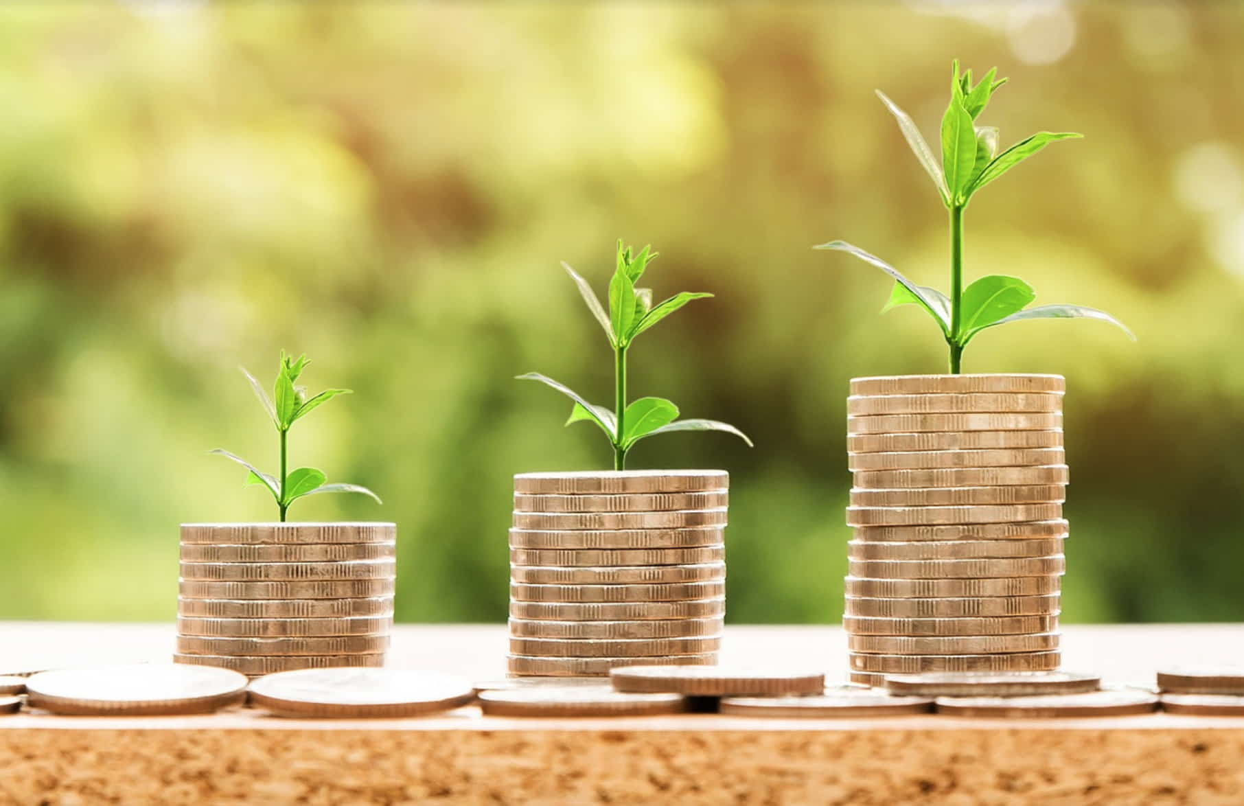 What Is Portfolio Investment? An In-Depth Guide